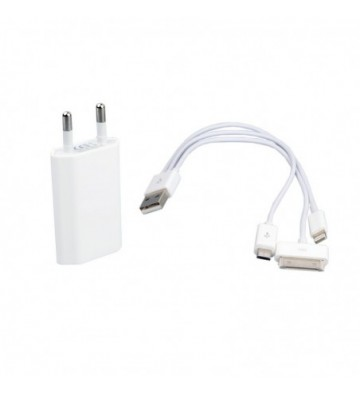 2-in-1 universal charger